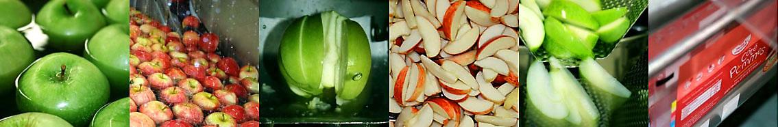 Fournisseur de pommes crues tranchées en quartiers en sachets